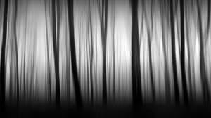 photography black and white long exposure fine art